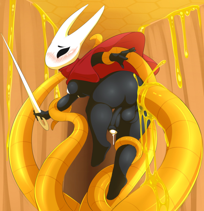fight to hollow how knight radiance Fat orange cat the raven